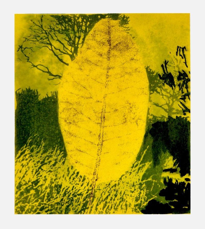 papier acrylique couleur de Jean-Luc Guin'Amant vente art boutique galerie22