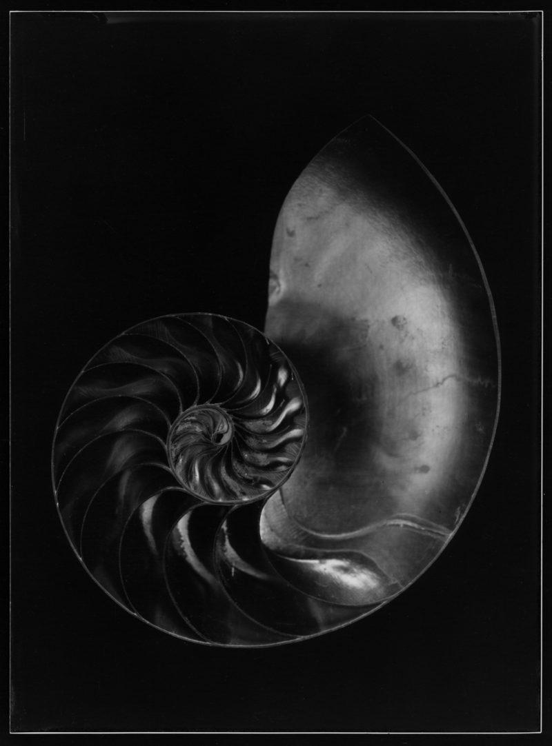 photographie noir et blanc de jean-philippe pernot disponible dans le store de la galerie22