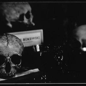 photographie noir et blanc contemporaine sur les vanités de Jean-Philippe Pernot en vente dans la boutique de la galerie22